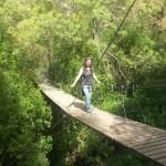 Puente hacia las ermitas de Ulldemolins en el Priorat